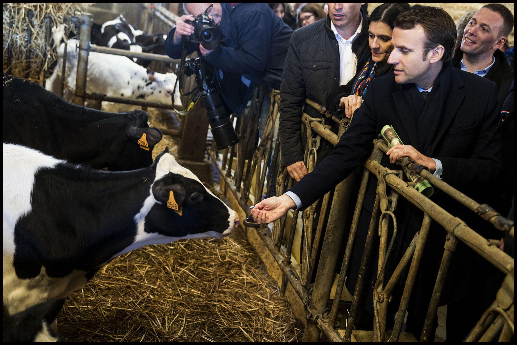 Déplacement d'Emmanuel MACRON en Mayenne et Maine-et-Loire sur le thème de l'agriculture