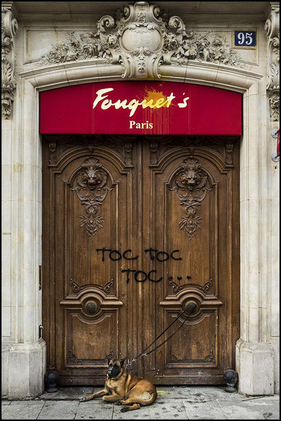Les dégâts sur les Champs Elysées au lendemain de la violente manifestation des gilets jaunes. Le chien d'un vigile garde la porte d'entrée de service du Fouquet's...